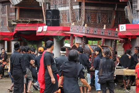 toraja: TANA TORAJA, INDONESIA - JULY 3 2012: Group of Torajan people at work for the set up of a funeral ceremony in Indonesia