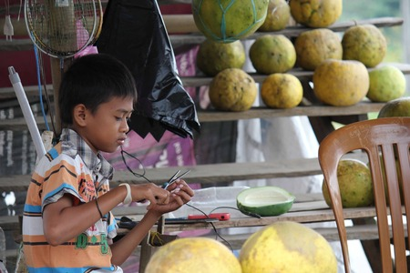 celebes: SULAWESI, INDONESIA - JULY 2 2012: Young Indonesian boy at work in a fruit stand on the street in the Sulawesi region of Indonesia