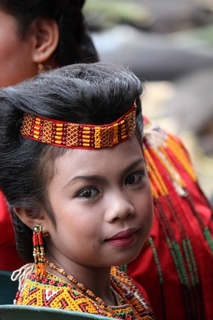 indonesia girl: TANA TORAJA, INDONESIA - JULY 3 2012: Portrait of a young Toraja girl in traditional costume at a funeral ceremony Editorial