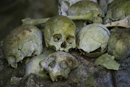 toraja: TANA TORAJA, INDONESIA - JULy 4 2012: Skulls & bones in a burial cavegrave Tana Toraja, Indonesia. Editorial