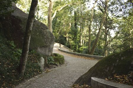road and path through: The path to go to Moors Castle in Sintra, Portugal, surrounded by trees and nature Editorial