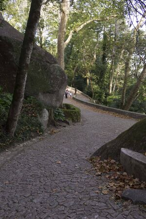 moors: The path to go to Moors Castle in Sintra, Portugal, surrounded by trees and nature Editorial