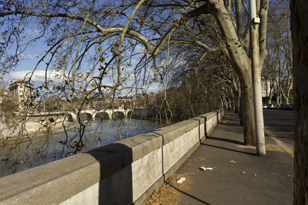 tevere: ROME, ITALY - DECEMBER 31 2014: Lungotevere Marzio street in Rome, with trees and Ponte Cavour in the background, on Tiber river in Rome