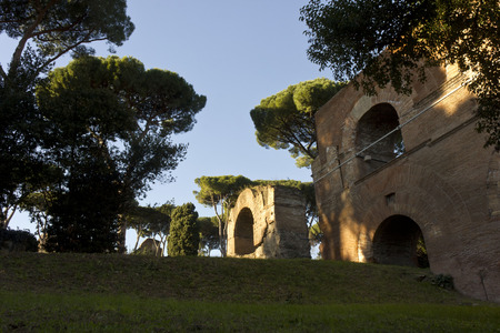 palatine: ROME, ITALY - JANUARY 1 2015: Ancient ruins on Palatine Hill in Rome, view from Via di San Gregorio