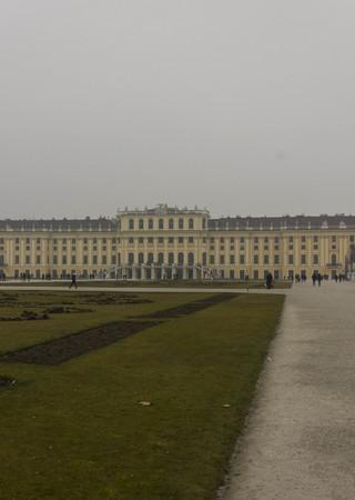 schloss schonbrunn: VIENNA, AUSTRIA - JANUARY 2 2016: Backside of Schonbrunn Palace with its garden, in a foggy winter day