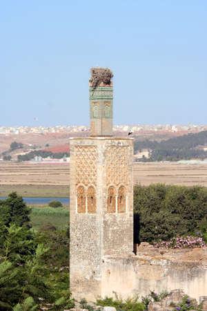 ancient atlantis: Cellah necropolis minaret, Morocco