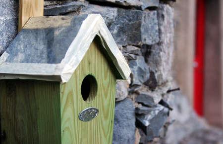 little bird s house photo