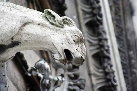 gargouilles: d�tail de gargouilles, Notre-Dame, Paris Banque d'images