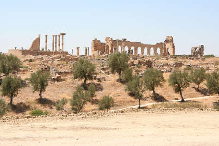 volubilis: Volubilis ruins, Morocco