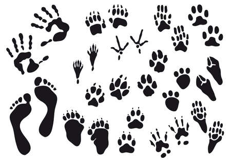 huellas negras humanas y animales Ilustración de vector