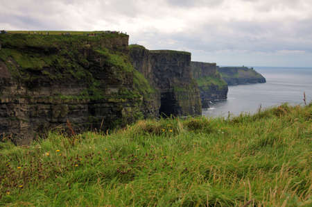 moher: Green grass and Cliffs of Moher landscape, Ireland