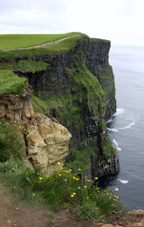 moher: Cliffs of Moher in vertical, Ireland