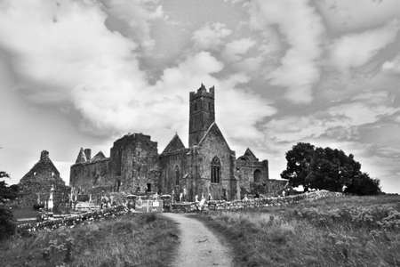 abbey ruins abbey: Quin Abbey ruins in Ireland, black and white version