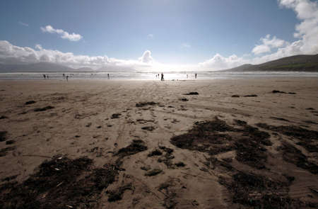 inch: Inch beach at Castlemaine town in Ireland