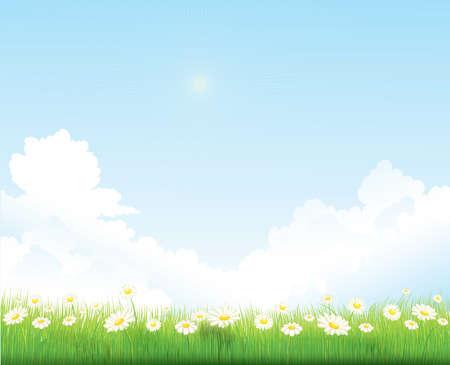 wiosna, niebo, tło wektor