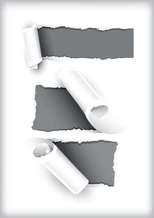 snatch: vector illustration with three rolls of torn paper