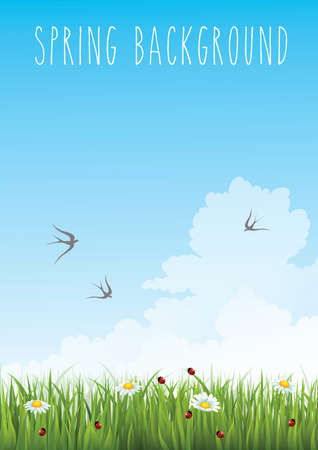 field flowers: vertical blue gradient sky and green grass spring background