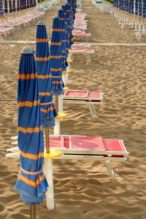 ocean plants: line of closed blue umbrellas on the beach