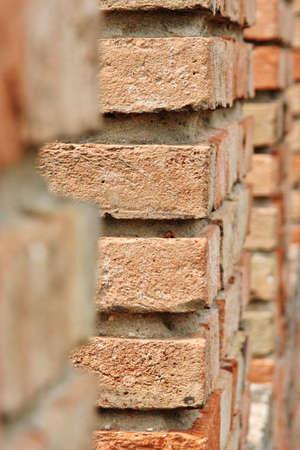 dante alighieri: detail of wall made of red bricks, selective focus