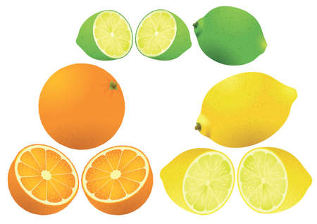 zest: Set of three different citrus fruits vector illustration. Illustration