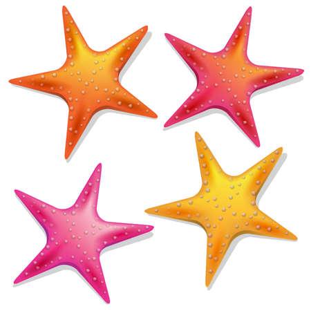 set of four colored starfishes Ilustração