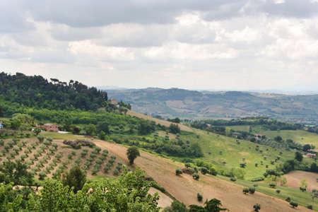 Hill landscape near Recanati, Marche, Italy Imagens