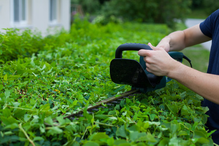 Man trimming a hedge next to a house Stock Photo