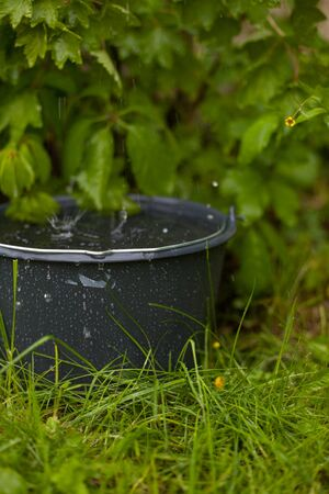 collecting: Collecting rainwater into a overflowing bucket in the grass