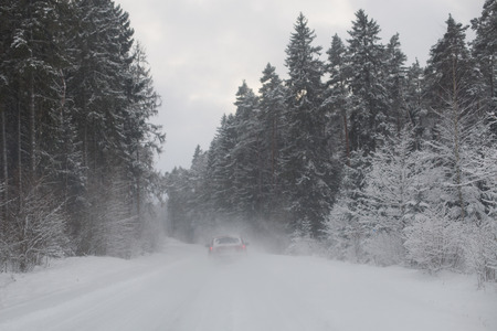 driving conditions: Red car driving on a snowy road in the woods in a snow storm