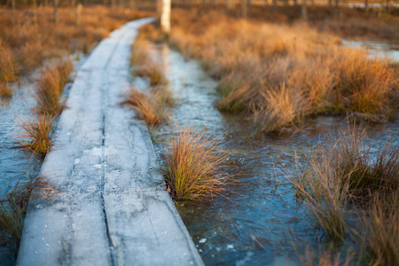 Cold winter sunset background of a bog landscape with a wooden boardwalk heading over frozen water Banco de Imagens