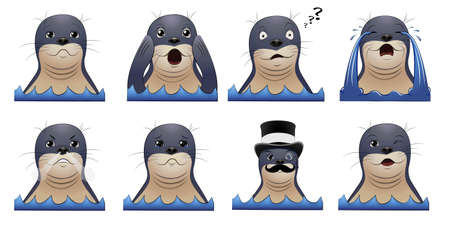 Set of seal animal heads with different emotions. Vector cartoon illustration on white background. Illustration