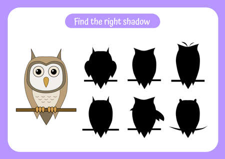 Educational game for children. Find two same owls. Trains attention and concentration. Worksheet for preschool activity.