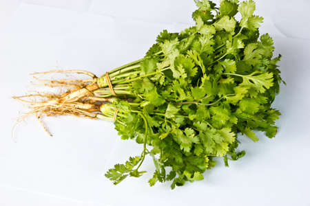 Delicious healthy Coriander isolated over white background  Natural aphrodisiac  photo