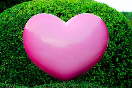 pink heart: Big pink heart on garden background
