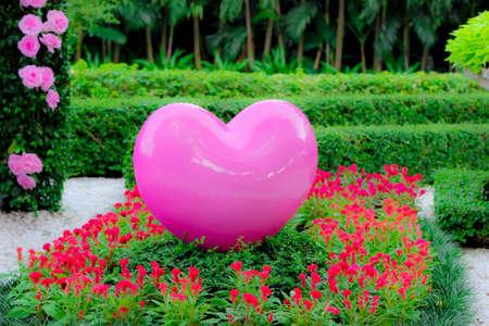 corazon rosa: Coraz�n rosado grande en el jard�n