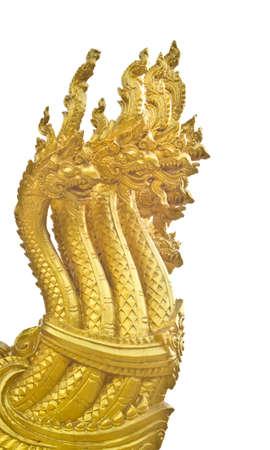 Golden head Na-ga on white  photo