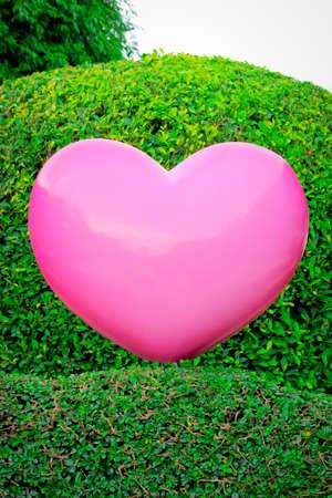 pink heart: Pink heart on garden