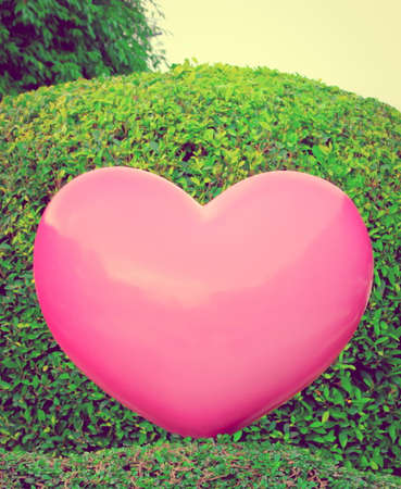 rende: Retro image - Abstract Love Concept , Big pink heart on garden