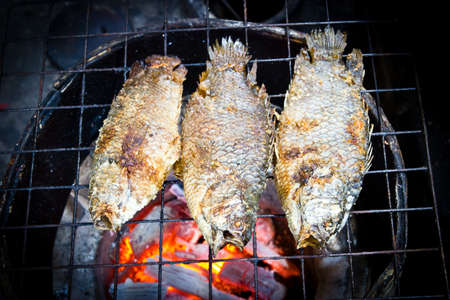 Grilling fish on campfire photo