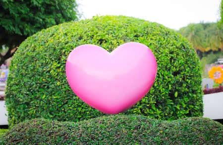 corazon rosa: Concepto de amor de fondo. Coraz�n rosado en el fondo del jard�n Foto de archivo