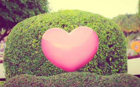 corazon rosa: Foto de la �poca: el coraz�n rosado en el fondo del jard�n Foto de archivo