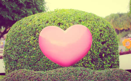 pink heart: Vintage photo : Pink heart on garden background