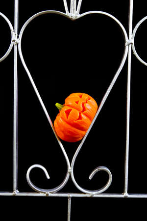 Halloween in love. Jack O Lantern pumpkin in heart shaped metal on black background photo