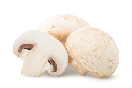 mushroom, champignon, isolated on white background, clipping path, full depth of field