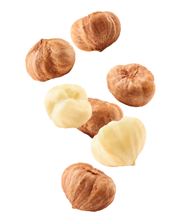 Falling hazelnut peeled, isolated on white background, clipping path, full depth of field Stok Fotoğraf