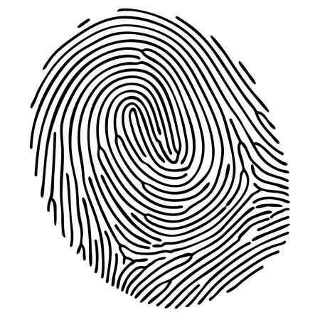 fingerprint: Vector black fingerprint on white background