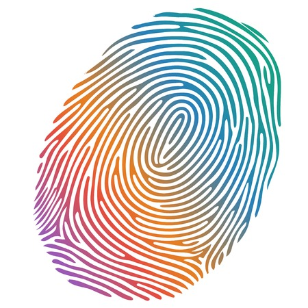 identity theft: Vector many-coloured fingerprint on white background