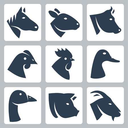 sowing: domesticated animals icons set  horse, sheep, cow, chicken, rooster, duck, goose, pig, goat