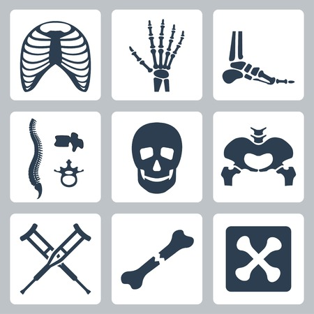 hands on hips: Vector isolated skeleton icons set Illustration
