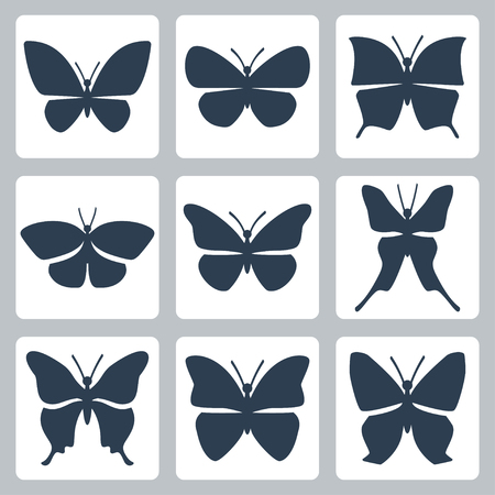 morpho: isolated butterflies icons set